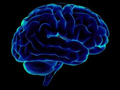 Meningitis Brain