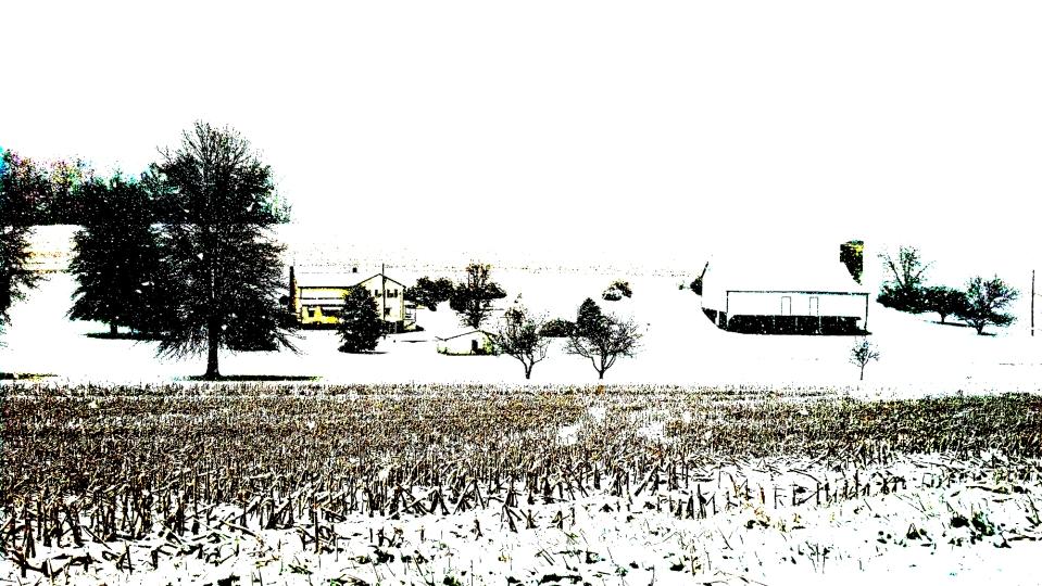 Snow Falling on Field
