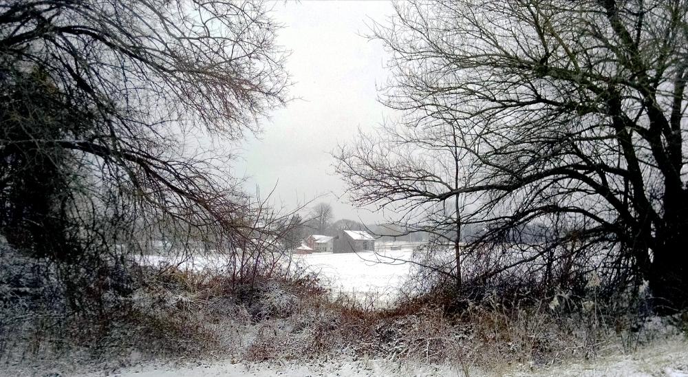 Across the Snowy Field