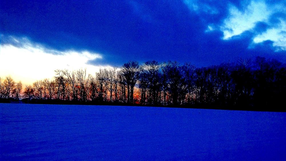 Seasonal Blue