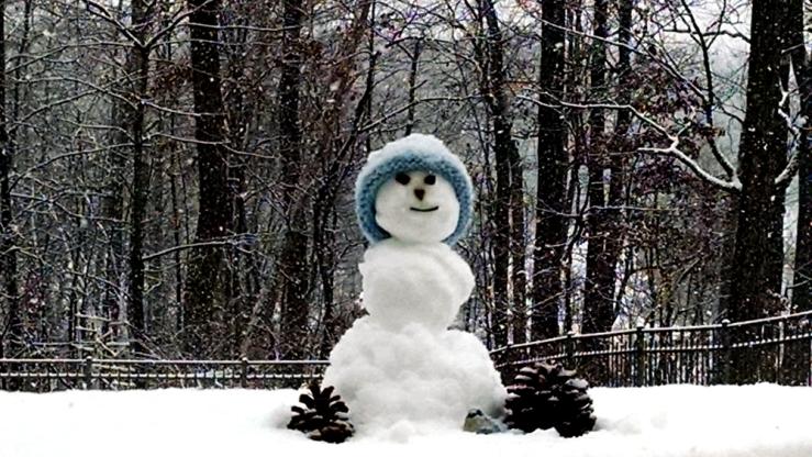 Snow Person