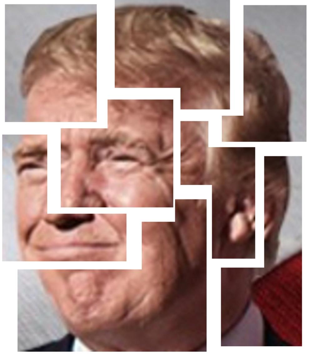 understanding-trump
